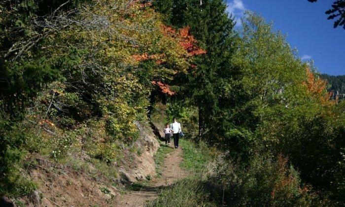 naturparkhaus-dolomiten